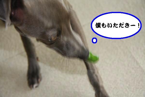 IMG_8150-1_convert_20120625224018.jpg