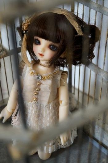 DSC01639 - コピー
