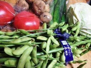 0624小島野菜