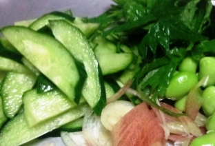 夏野菜の冷奴 材料