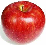 りんご写真