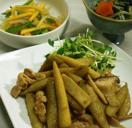 エリンギとごぼうの炒め 三品集合