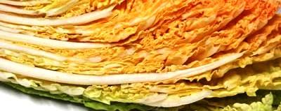オレンジ白菜①