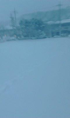大雪の公園20140208_1702