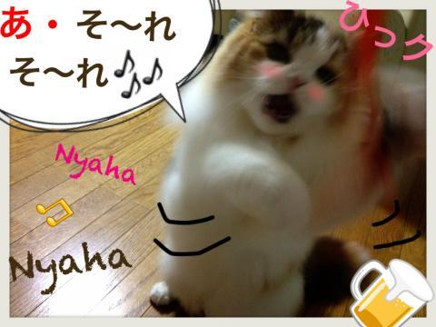 IMG_3548_convert_20121004195606.jpg