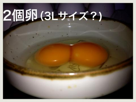 IMG_4045_convert_20121025195652.jpg