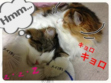 IMG_6736_convert_20121225202959.jpg