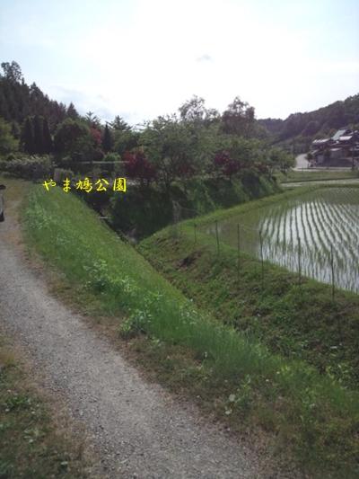 20120606-11.jpg
