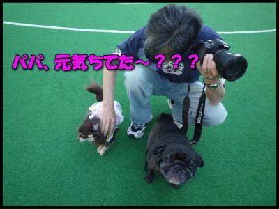 image13_20120510231157.jpg