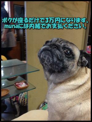 image7_20120510111856.jpg