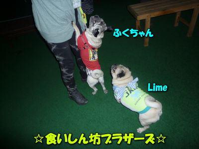 image9_20120615140359.jpg