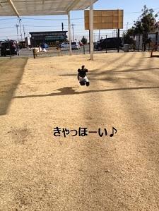20130204203653b6a.jpg