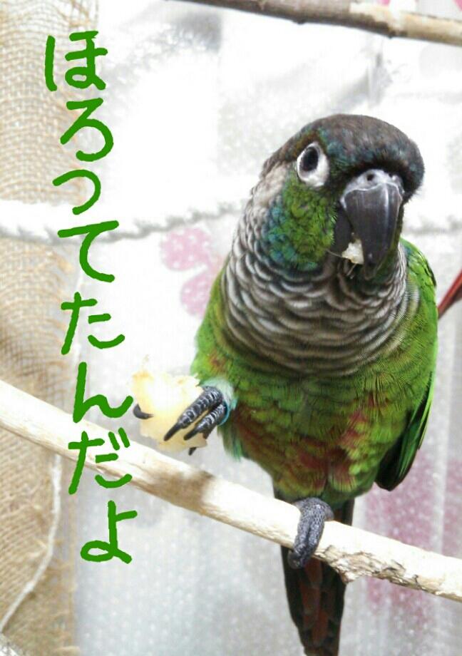 fc2_2014-01-23_20-02-50-624.jpg