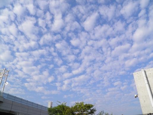 ひつじ雲20121010-PA100138
