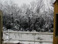 初雪2013その1