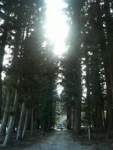 そらのひかり-林道