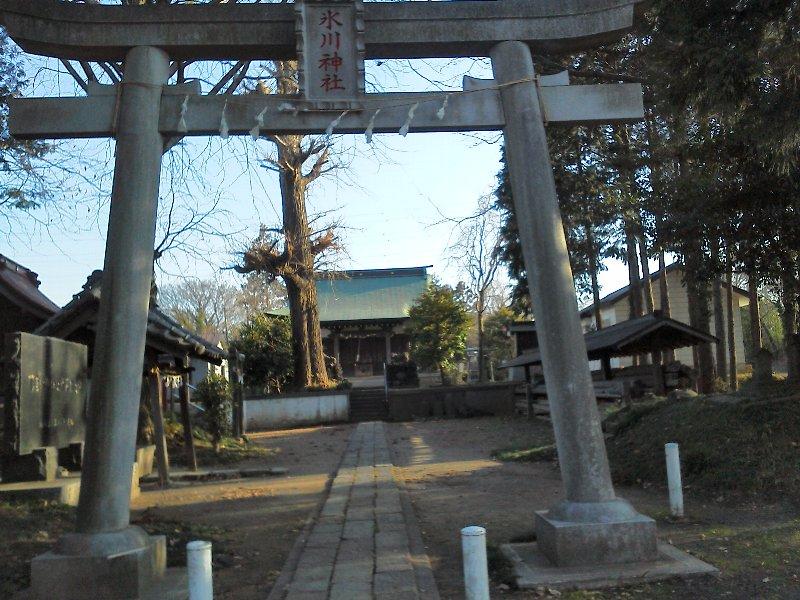 F1000382下宗岡 下の宮氷川神社