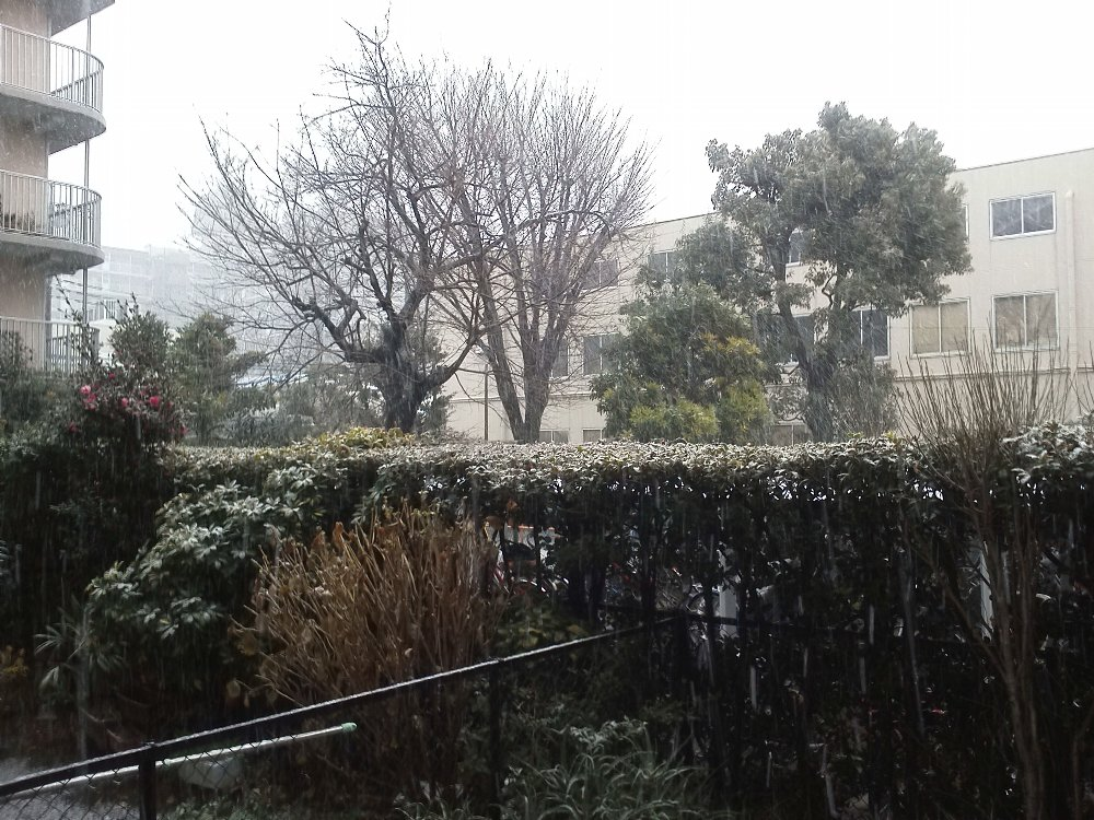 F1000495大雪の日1 14