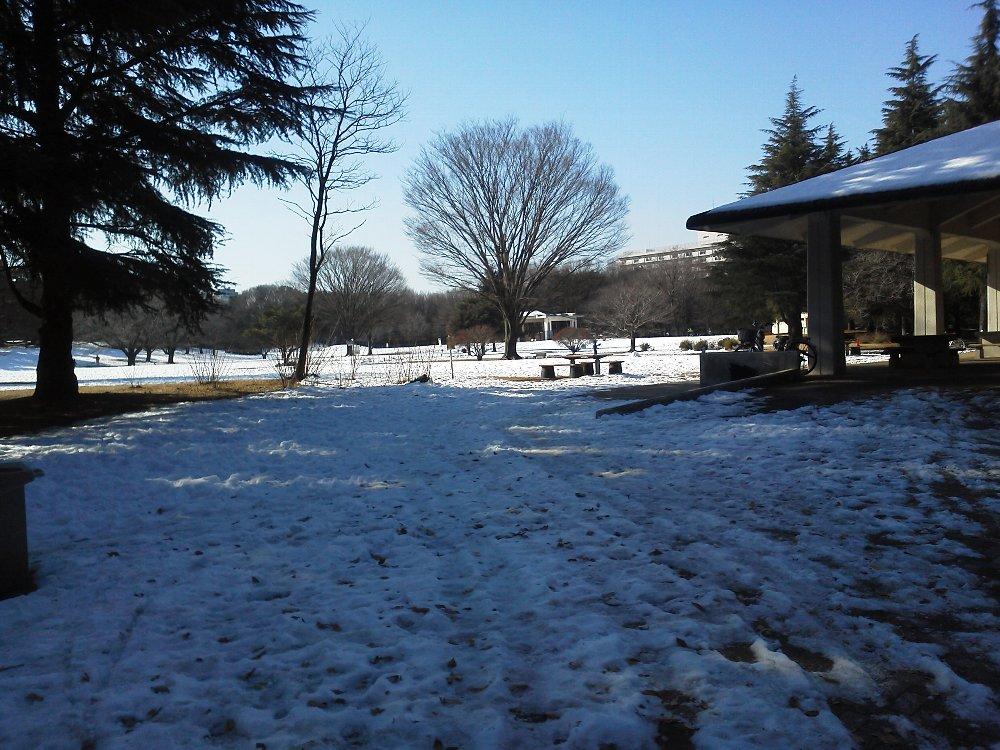 F1000510雪 光が丘公園