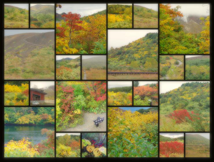 2012.10.04 浄土平の紅葉