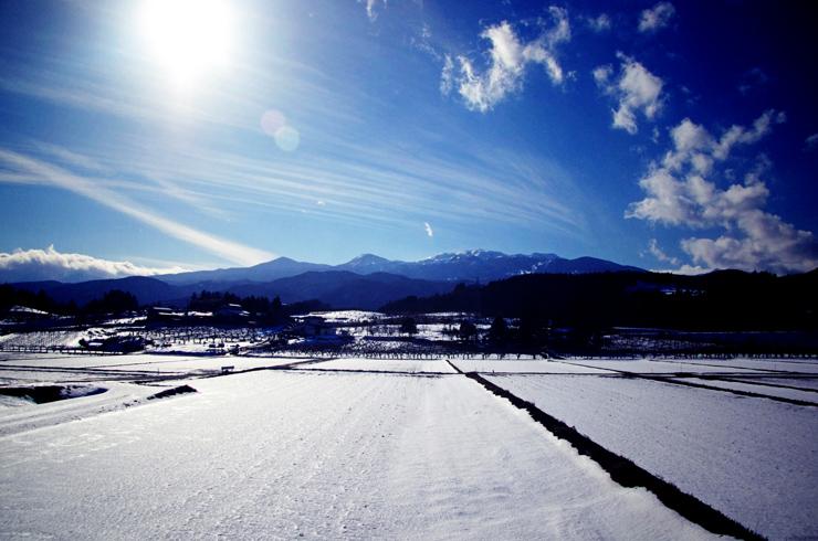 或る晴れた冬の日の午後