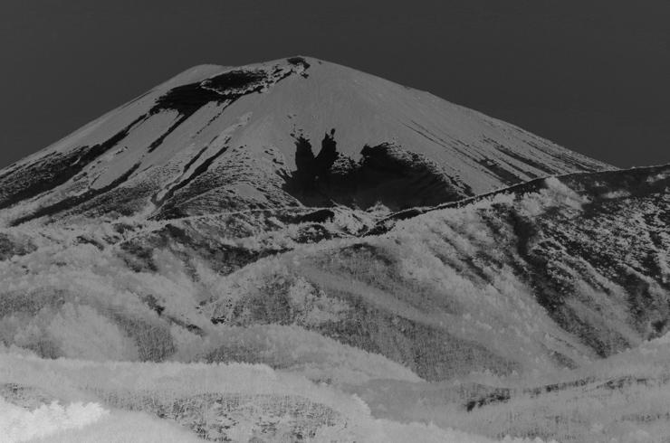 ネガ型雪うさぎ