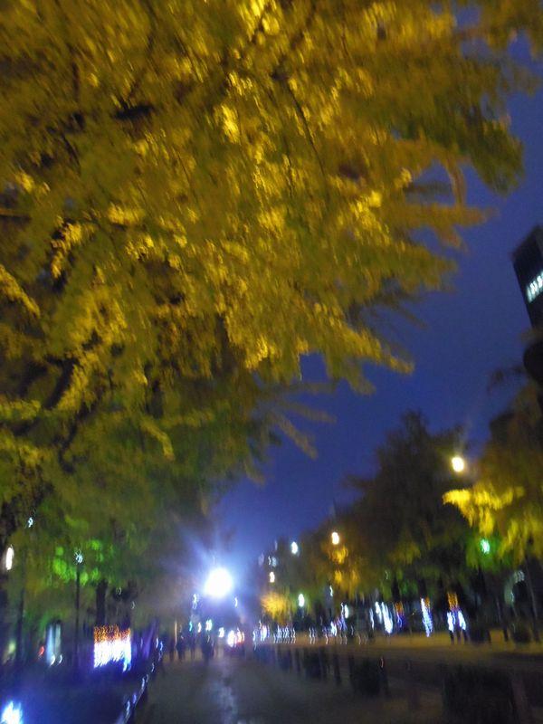 icho_20141130231655364.jpg