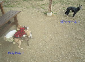 IMG_2592.jpg