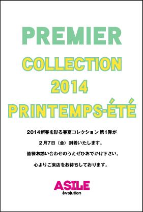 2014SS-DM1月表-1
