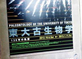 東大古生物学展2