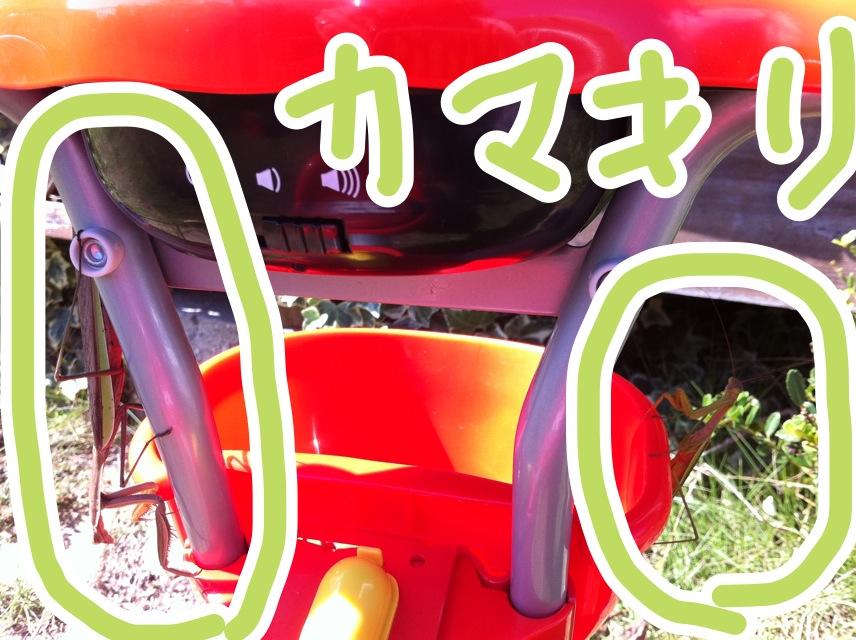 005_20121005142646.jpg