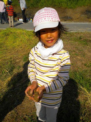 s-稲刈り11