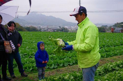 s-農業体験4
