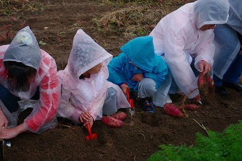 s-農業体験1