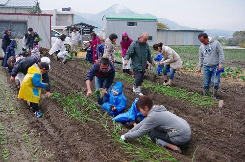 s-農業体験5