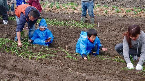 s-農業体験7