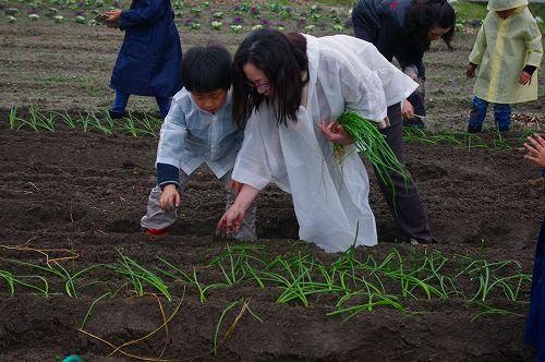 s-農業体験8