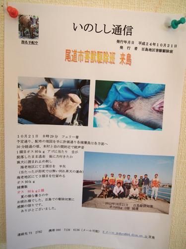 2012momoshima08-m.jpg