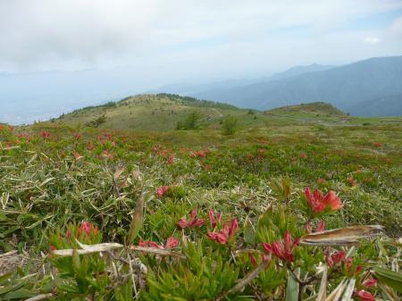 鉢伏山からの高ボッチ