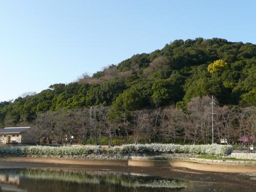 耳成山公園①