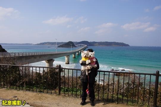 tsunoshima1