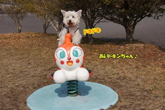 tobishima24