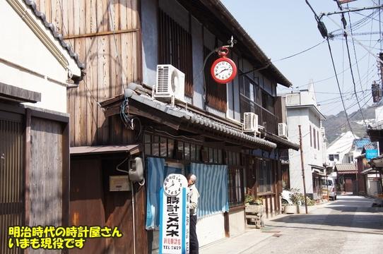 tobishima19