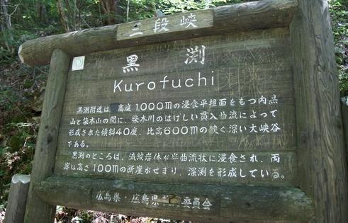 kurofuchi