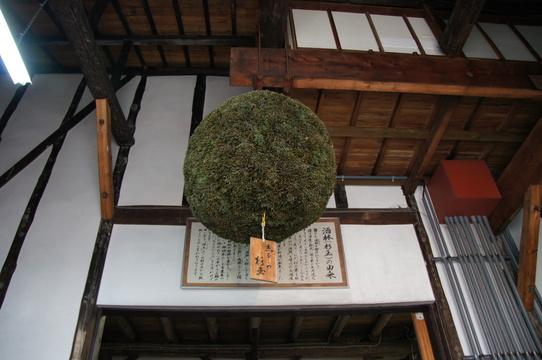 sake14