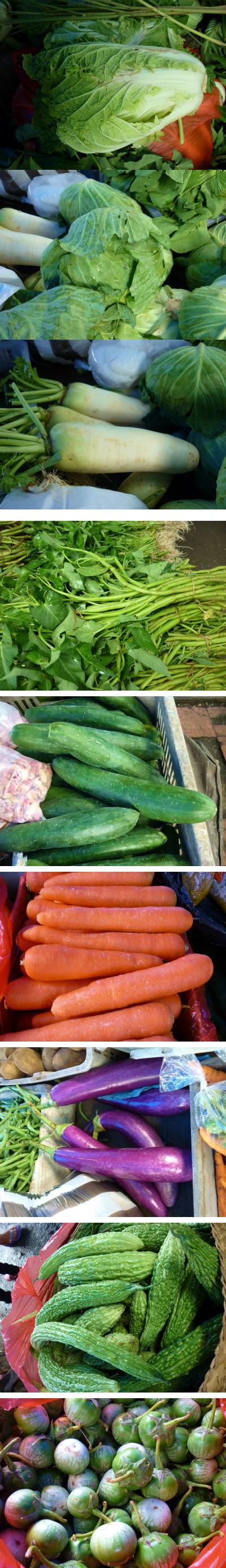 野菜ブログサイズ