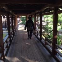 3大覚寺村雨の廊下
