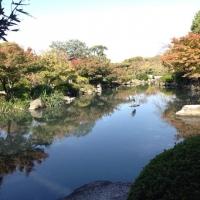 4東寺瓢箪池の天鏡