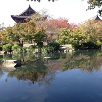 4東寺瓢箪池と金堂