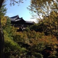 4東福寺臥雲橋から